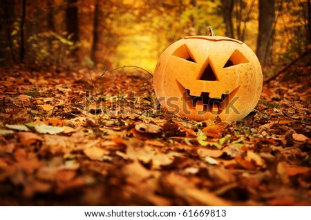 Halloween scary pumpkin in autumn forest - stock photo