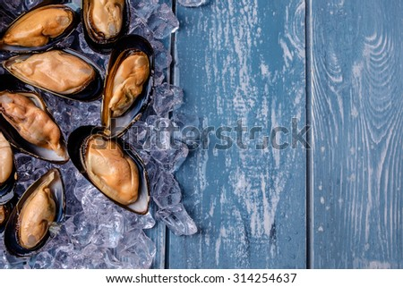 Halved fresh mussels on ice. Copyspace for text. - stock photo