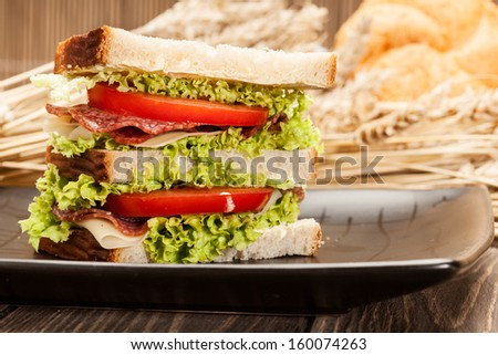 Ham and cheese sandwiches.   - stock photo