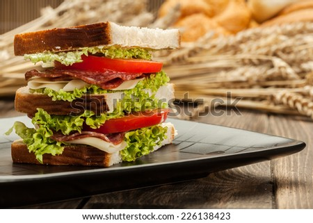 Ham and cheese sandwiches on a plate - stock photo