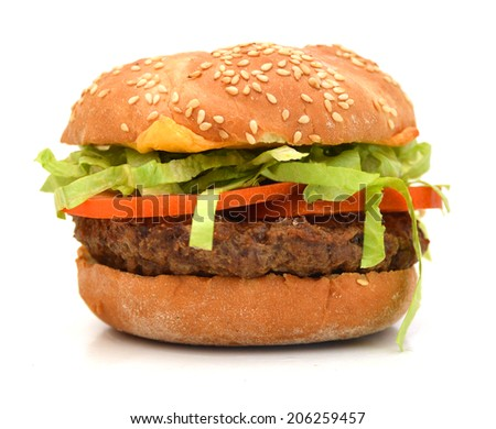 Hamburger with cheese, meat and fresh vegetables  - stock photo