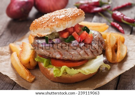 Hamburger with french fries, garnished with tomato, cucumber and onion - stock photo