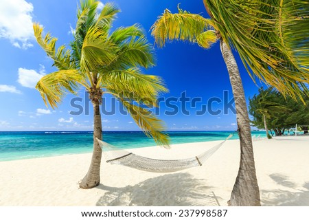 Hammock and palm trees at 7 mile beach, Grand Cayman - stock photo