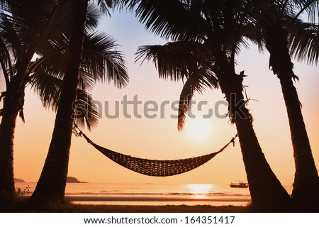 hammock and palm trees on the beach - stock photo