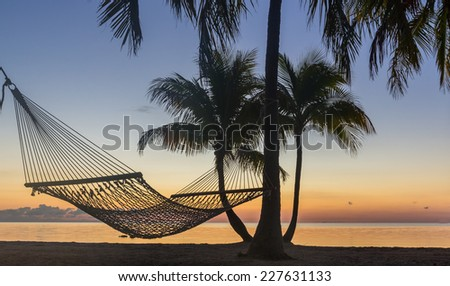 Hammock hangs between palm trees at sunrise - stock photo