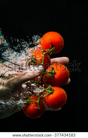 Hand dipping tomatoes under water. Washing vegetable - stock photo