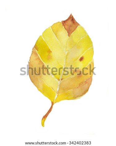 Hand draw watercolor yellow leaf - stock photo