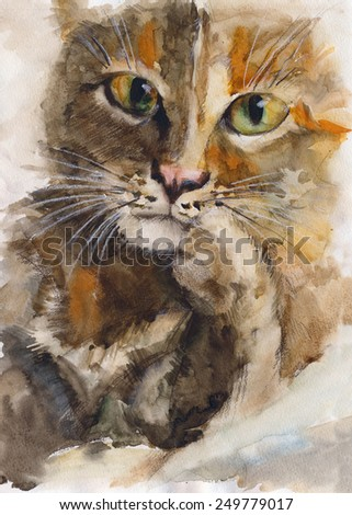 Hand drawing painting watercolor of cat  portrait - stock photo
