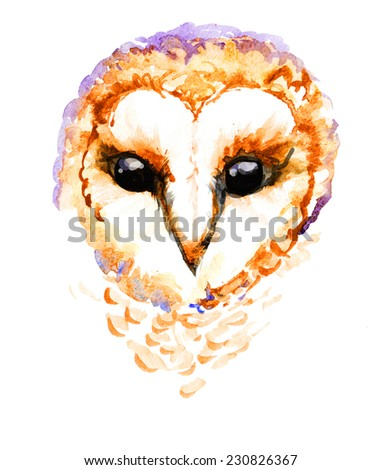 Hand drawing portrait of owl, illustration - stock photo