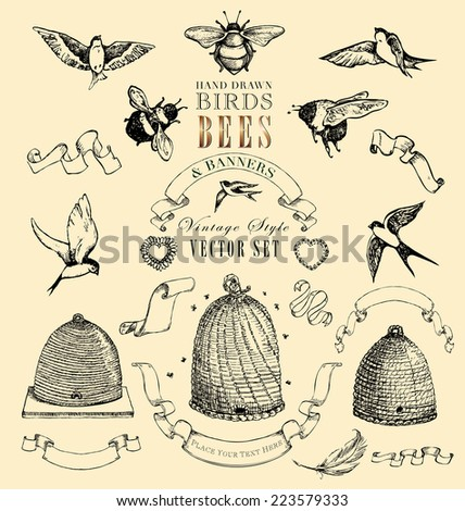 Hand Drawn Birds, Bees and Banners Vintage Style JPEG Set - stock photo