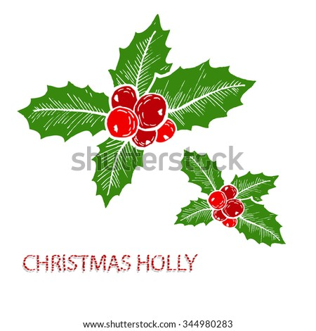 Hand drawn decorative christmas holly decorations, design elements. Can be used for cards, invitations, gift wrap, print, scrapbooking. Christmas and New Year background - stock photo