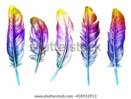 Hand drawn feathers set on white background in bright color. - stock photo