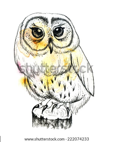 Hand drawn owl within colorful watercolor spot. - stock photo
