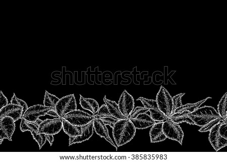 Hand drawn seamless border with foliage of rose. Monochrome leaf. Detailed sketch of leaves.  Black and white pencil or ink drawing. Rasterized version - stock photo