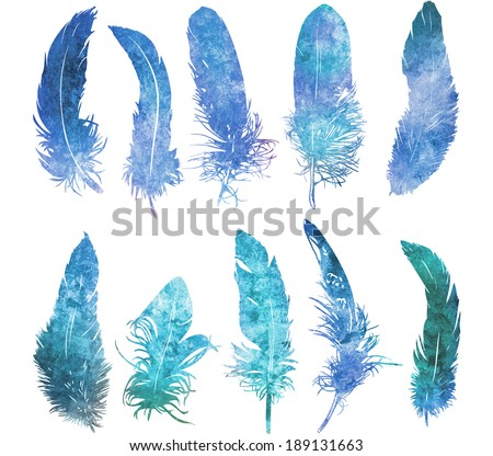 hand drawn watercolor  feather light blue set, raster illustration   - stock photo