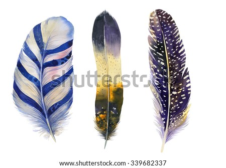 Hand drawn watercolor feather vibrant feather set.  Boho feather style. illustration isolated on white. Bird fly design for T-shirt, invitation, wedding card.Rustic feather Bright colors.  - stock photo