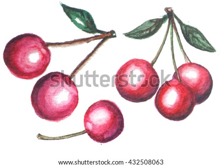 Hand drawn watercolor painting cherry on white background. illustration of berries. Cherry  logo design template Hand drawn painting black cherry on white background Watercolor illustration of berries - stock photo