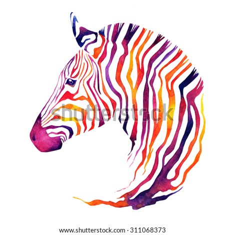 Hand drawn watercolor zebra's head. Good quality of illustration. Multicolor on white background. Nice abstract design for prints for clothes, covers, brochures with Africa or zoo themed, banners. - stock photo