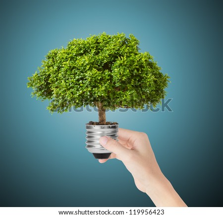 hand hold eco green energy light bulb - stock photo