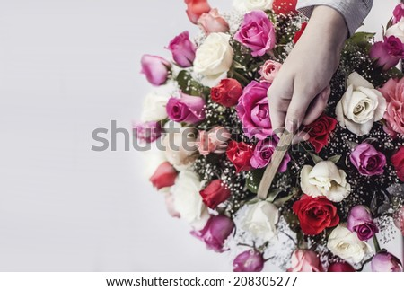 hand holding a basket of flowers - stock photo