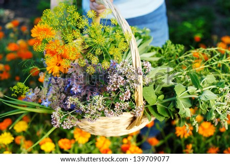 Hand holding a basket of flowers over the blurred background - stock photo