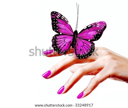 Hand holding a butterfly - stock photo