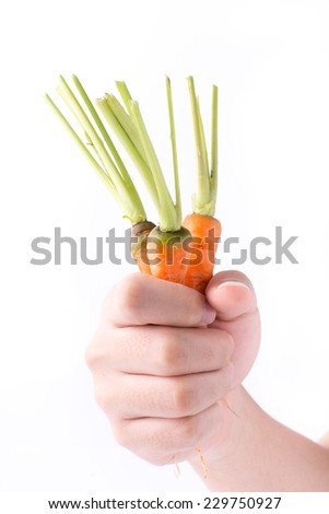 hand holding a fresh  carrot isolated on white background - stock photo