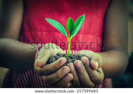 hand holding a green young plant - stock photo