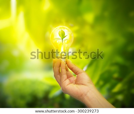 hand holding a light bulb with energy and fresh green leaves inside on nature background, soft focus - stock photo