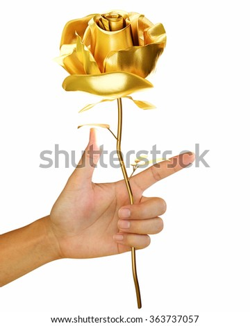 hand holding a single gold rose isolated on white background - stock photo