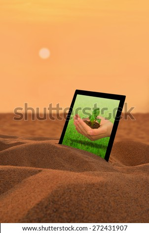 Hand holding a small plant.tablet PC in the desert.Environmental issues, Concept for growing business, ecology, freshness, freedom and other lifestyle issues.  - stock photo