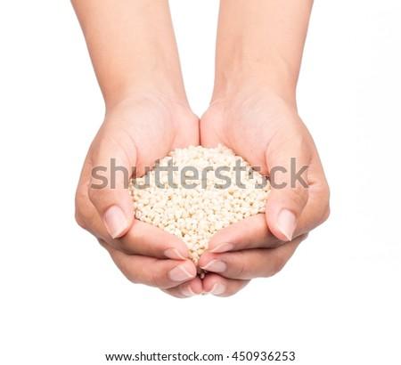 hand holding Barley rice isolated on white background - stock photo