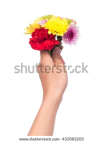 hand holding bouquet of chrysanthemum flowers  isolated on white background. - stock photo