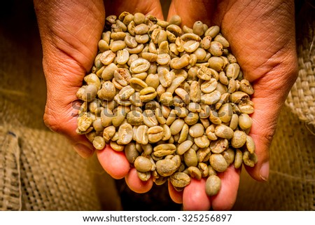 Hand holding cofee beans from Colombia, close up shot - stock photo