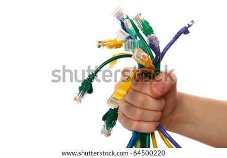 Hand Holding Colorful Internet Cables on White Isolated Background - stock photo