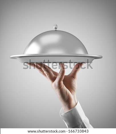 Hand holding dish isolated on gray background - stock photo