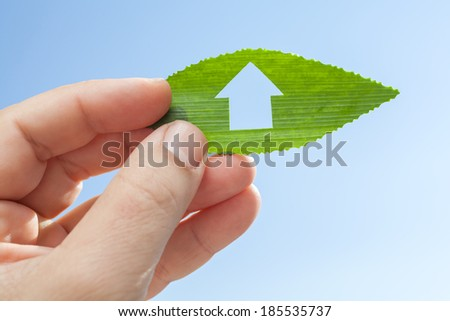 Hand holding eco house icon in nature - stock photo