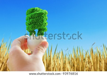 hand holding eco light bulb ,Concept Save green planet. - stock photo