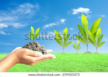 Hand holding green seedling with soil - stock photo