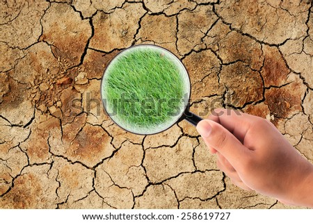 hand holding magnifying find grass on dry cracked the earth - stock photo