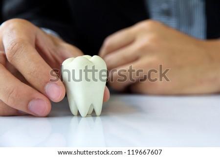 Hand holding molar,dental concept - stock photo
