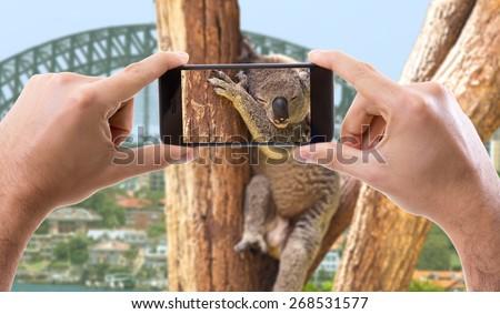 Hand holding Smartphone in Australia - stock photo