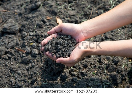 Hand holding soil surface top view - stock photo