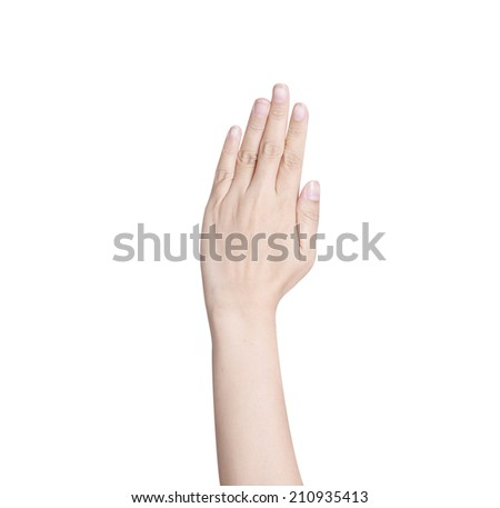 hand isolated - stock photo