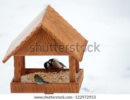 hand made animal feeder woodpecker - stock photo
