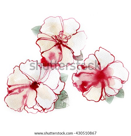 Hand painted blossom flowers. Colorful illustration in watercolor paintings.  - stock photo