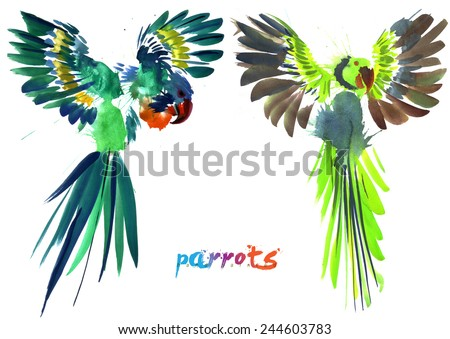hand painted parrots - stock photo