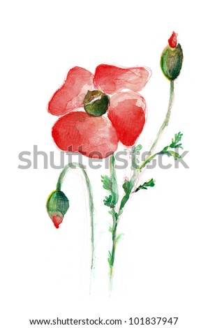 Hand Painted Poppy - stock photo
