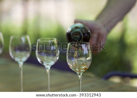 Hand pouring liquor into glasses during a vineyard tour - stock photo