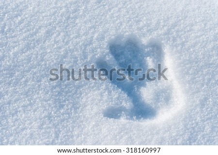 Hand Print in Snow - stock photo
